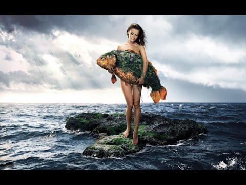 Подводный Мир   Голодная Рыба   Кормление с рук под водой