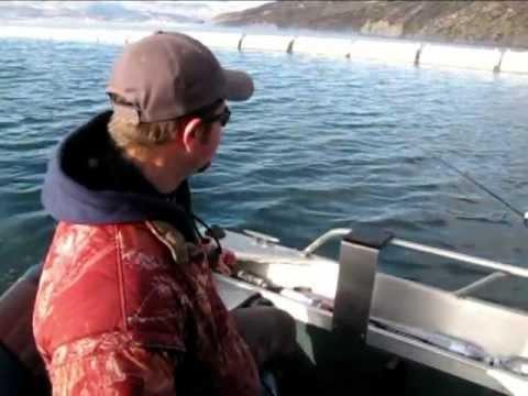 Winter Fishing At Rufus Woods Lake