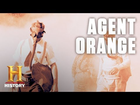 What Is Agent Orange?  History