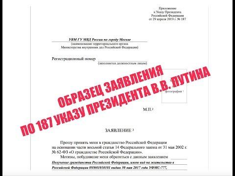 Заявление на упрощенное гражданство РФ по 187 указу В.В. Путина. ОБРАЗЕЦ. ФМС. миграционный юрист