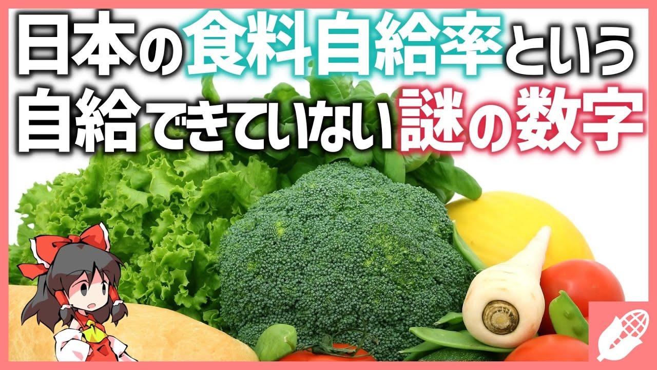 【ゆっくり解説】日本の「食の自給事情」と農業【地学/地理の雑学】