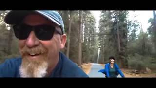 Yosemite is Bear Country!