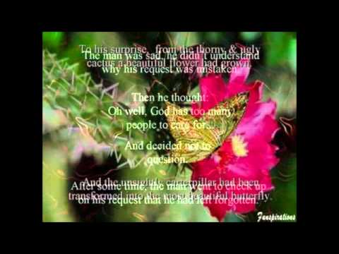 good morning flower youtube