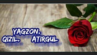 Yagzon_gruhi \