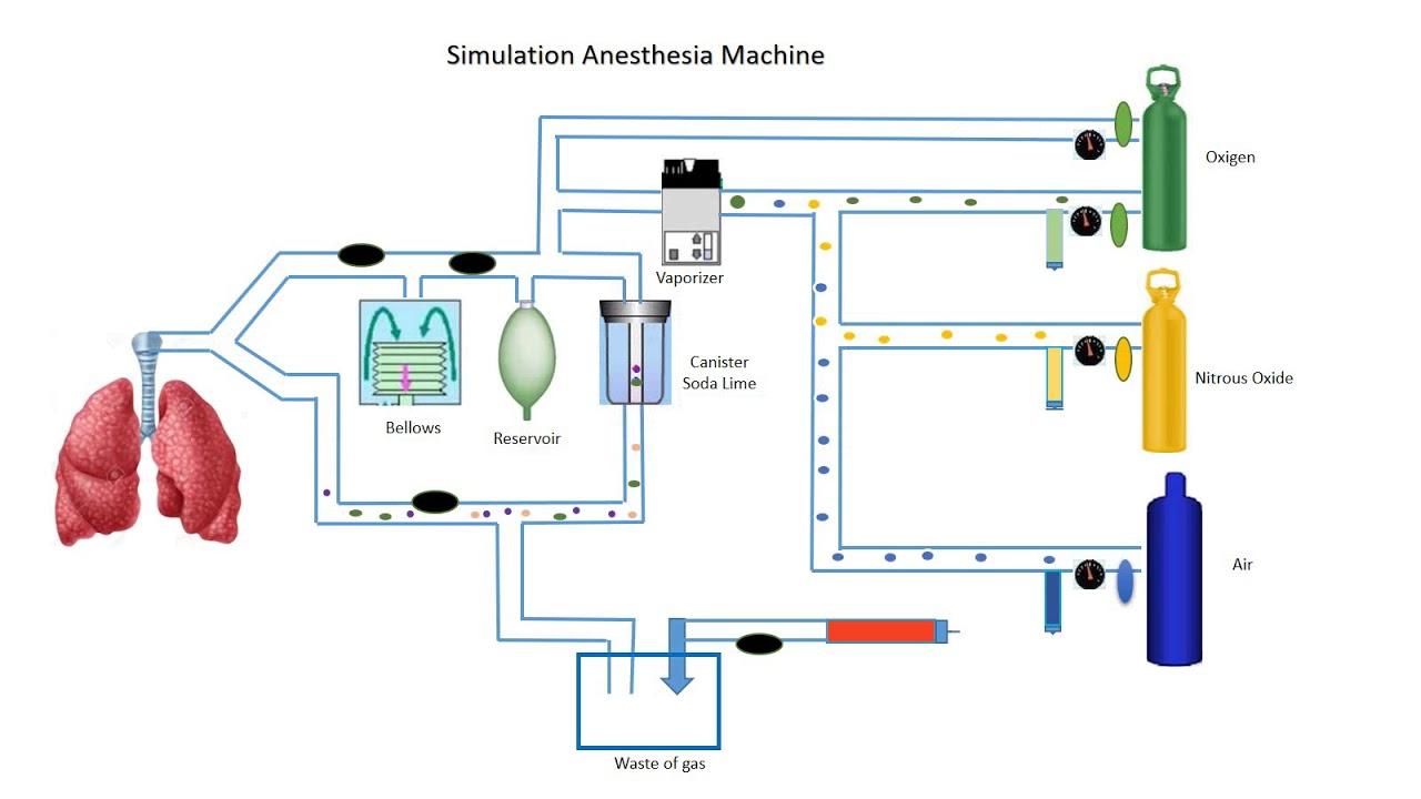 medium resolution of simulation
