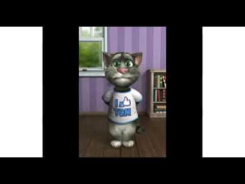 El gato tom cantando donde est�s llegare