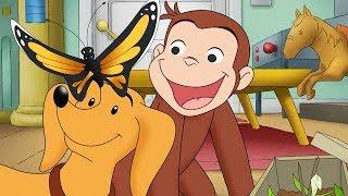 Jorge el Curioso en Español 🐵 Hundley Junior 🐵 Capitulos completos del Mono Jorge