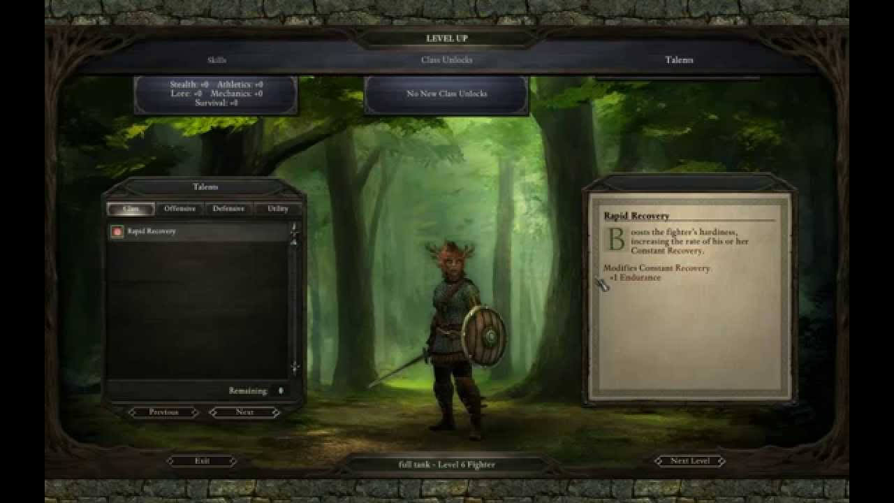 Pillars of Eternity: Fighters Creation & Development, pt  I - Tanks
