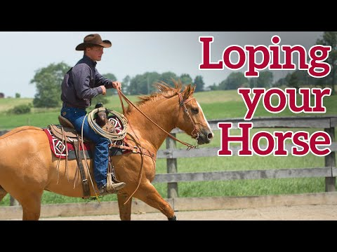 Tips for Loping Your Horse by C and C Horsemanship and Weaver Leather