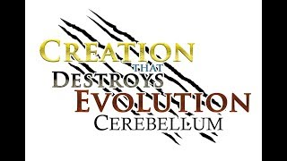 8/14/18 -Dr. Kent Hovind: Cerebellum - Creation that Destroys Evolution!