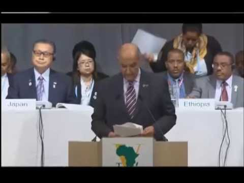 Fifth Tokyo Conference on Africa: Reports on Each of The Five Plenary Sessions