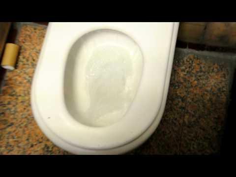 Longest Flush EVER - Madrid