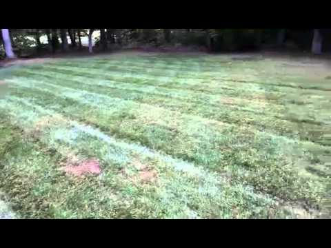 Lawn Care Rookie: Quick Tip #1 Clumping fix
