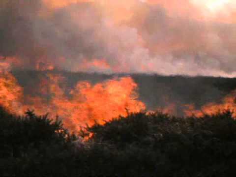 Welsh bagpipes - Gorse burning on the Preseli hills
