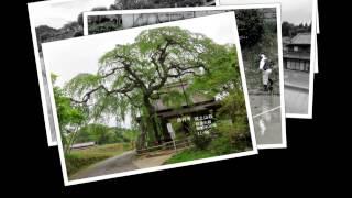 山を登る会 (第849回 )室生龍鎮溪谷 ルート動画