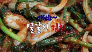 얼갈이 김치 맛있게 담그는 방법~ 실파넣고 맛있게~
