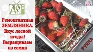видео Земляника