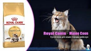 Корм для взрослых кошек породы мейн кун · Royal Canin Maine Coon