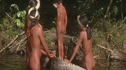 Aislados: Tribu Zo'é (Parte 3) /  Isolated: The Zo'é tribe (part 3)