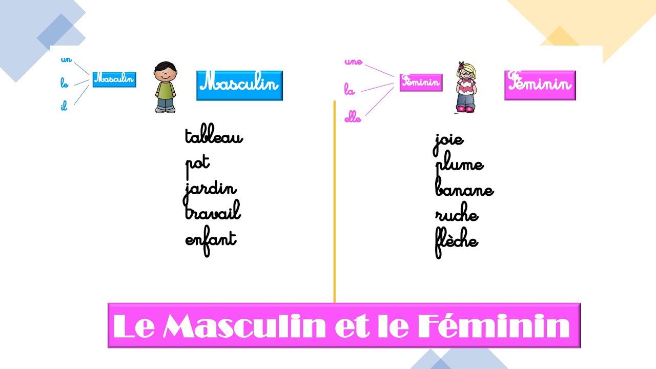 Francais Cp Masculin Et Feminin Lecon Youtube