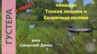 Русская рыбалка 4 - река Северский Донец - Густера с двух берегов