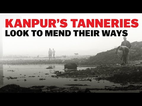 Why Kanpur's Tanneries Are At The Centre Of A Fight To Save The Ganga