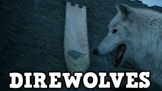 Game of Thrones Season 7 Direwolves - Ghost and Nymeria