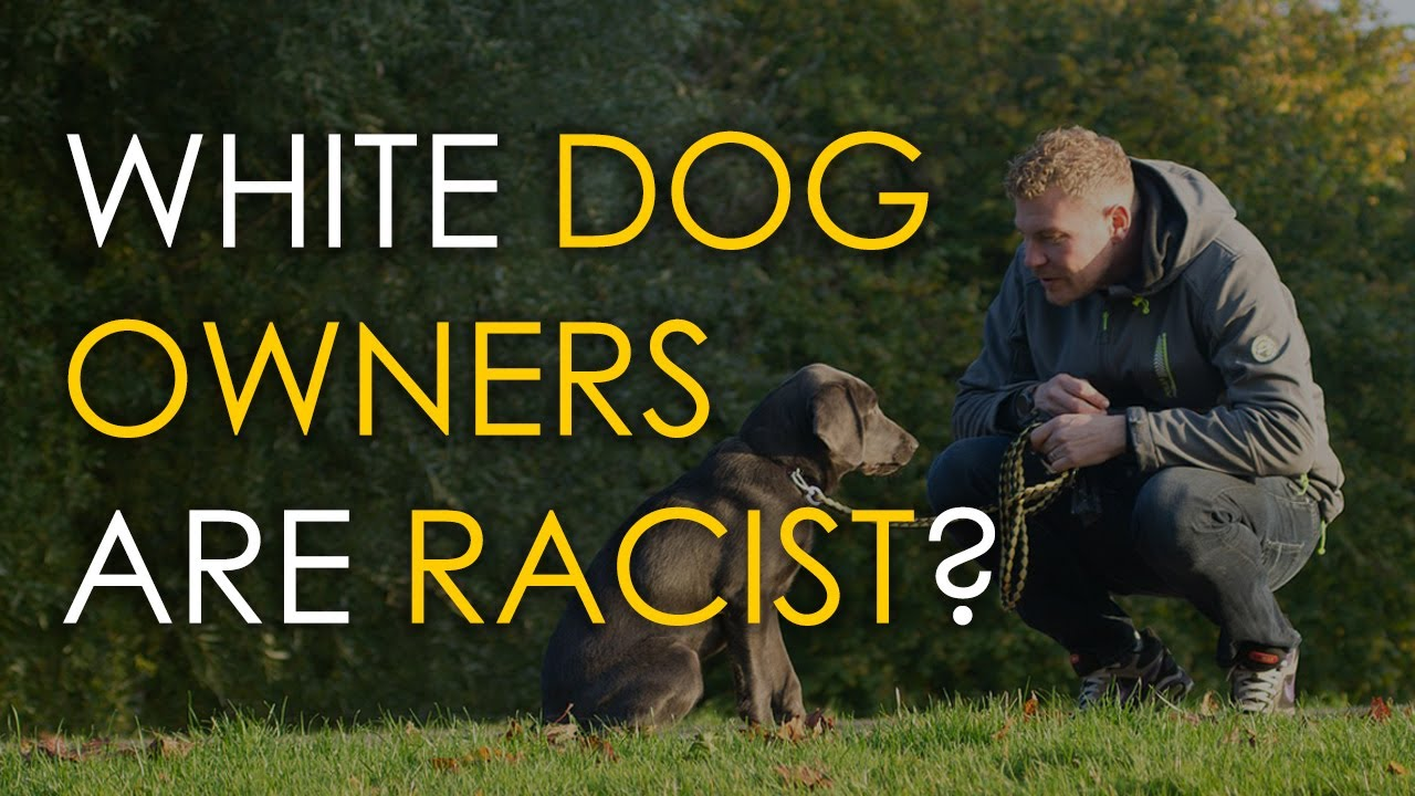White People who own dogs are Racists. Troll or Sjw?