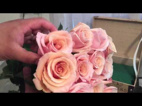 Roses in Suitcase Floral Arrangement Process