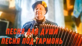 """""""Что то позабросил я гармонь"""", (хорошая песня под гармонь). Поёт Николай Кудрявцев."""
