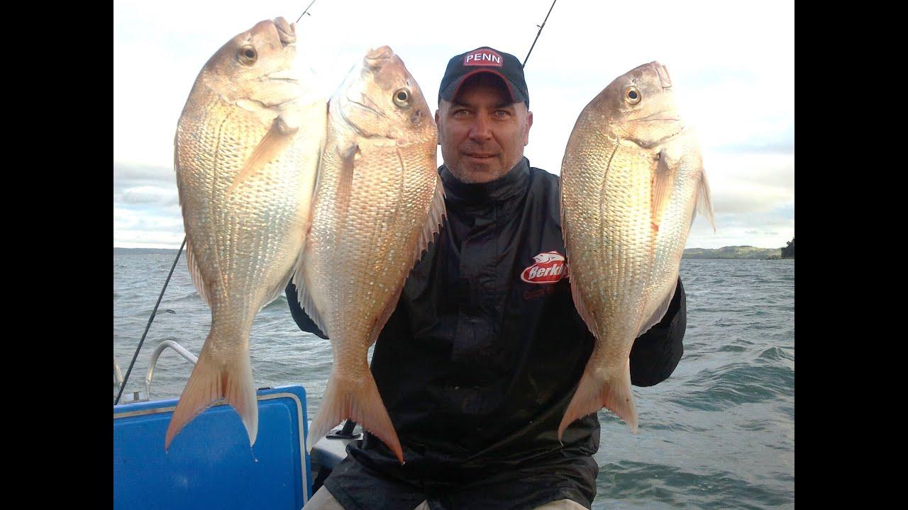 Reel kiwi fishing fish whisperer on the kaipara youtube for Kumak s fish
