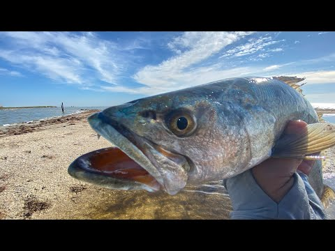 PERFECT Weather For TROUT Fishing And WHY | Kayak Fishing