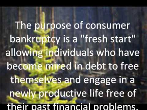 Bankruptcy Attorney Toms River NJ