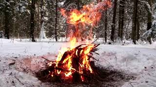 """Захватывающие снегоходные прогулки """"Экстрим-Моторс-Кемерово"""""""
