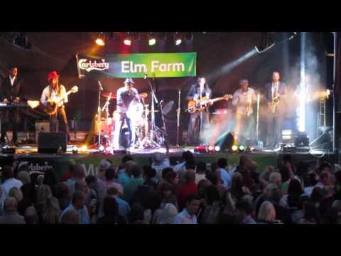 The Dualers At Elm Farm Festival 2013