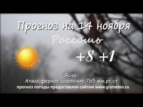 Прогноз погоды на 14.11.2019, Блокнот Россоши