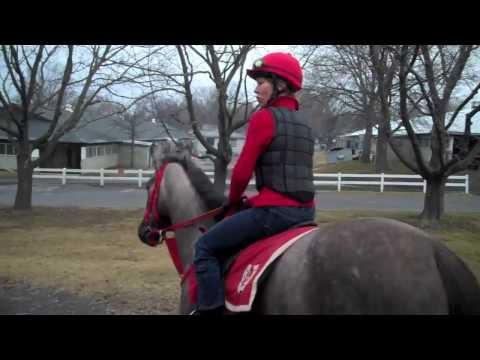#5 Janice L. Blake Exercising the Thoroughbred Race Horse