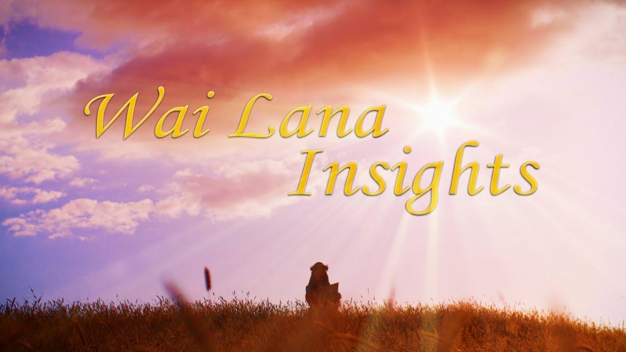 Wai Lana Insights : Promo Video