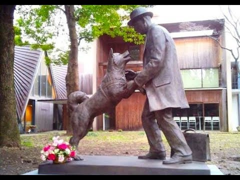 Nearly 100 Years Later, One Dog's Unwavering Loyalty Is Still Honored And Celebrate
