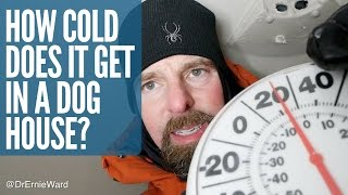 How Cold Does It Get in a Dog House? Dr. Ernie Ward