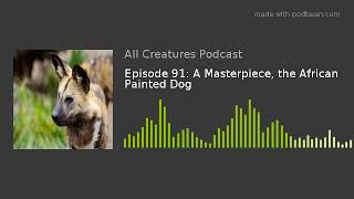 Episode 91: A Masterpiece, the African Painted Dog