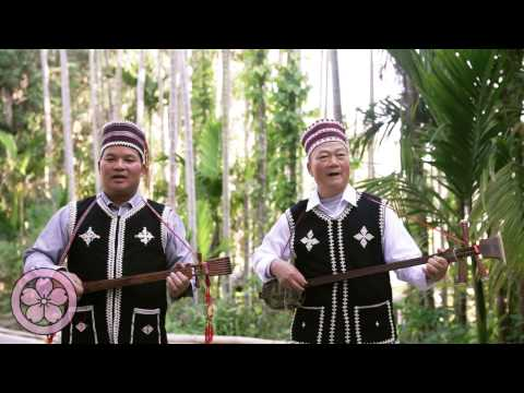 Traditional Dai music performance in southwest China