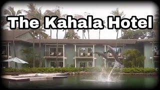 The Kahala Hotel & Resort   Things To Do   Oahu, Hawaii