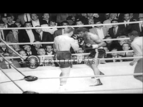 Jerry Quarry wins the boxing match organized by World Boxing Association against ...HD Stock Footage
