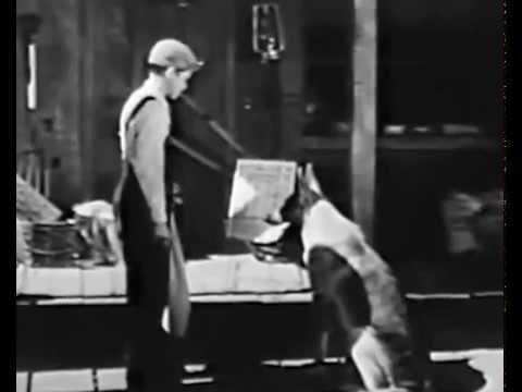 My Dog Shep (1946) TOM NEAL