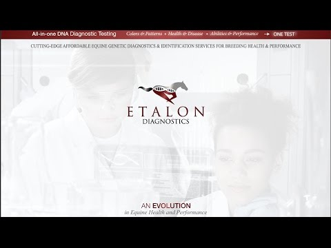Etalon Diagnostics Horse DNA Testing