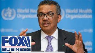 WHO Director-General under fire for handling of coronavirus
