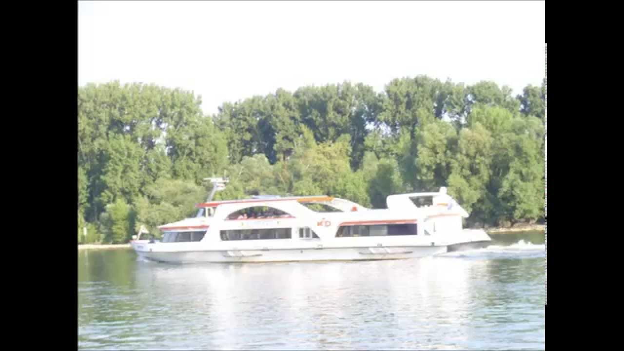 Rheinschiffe vor dem Campingplatz Brückenschänke in Eltville im ...