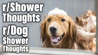 Showerthoughts Weekly August 19