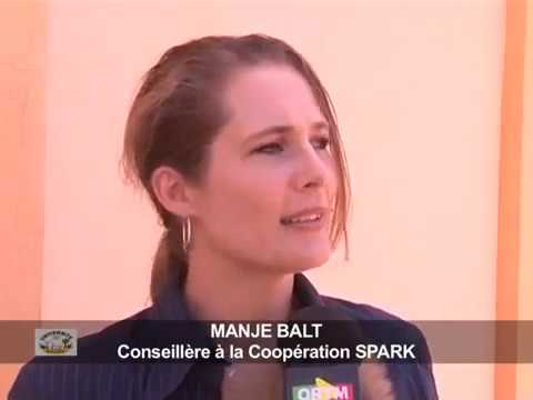 Spark Project Mali - Closing Ceremony CEEUS2014 on Mali television - interview with Marije Balt